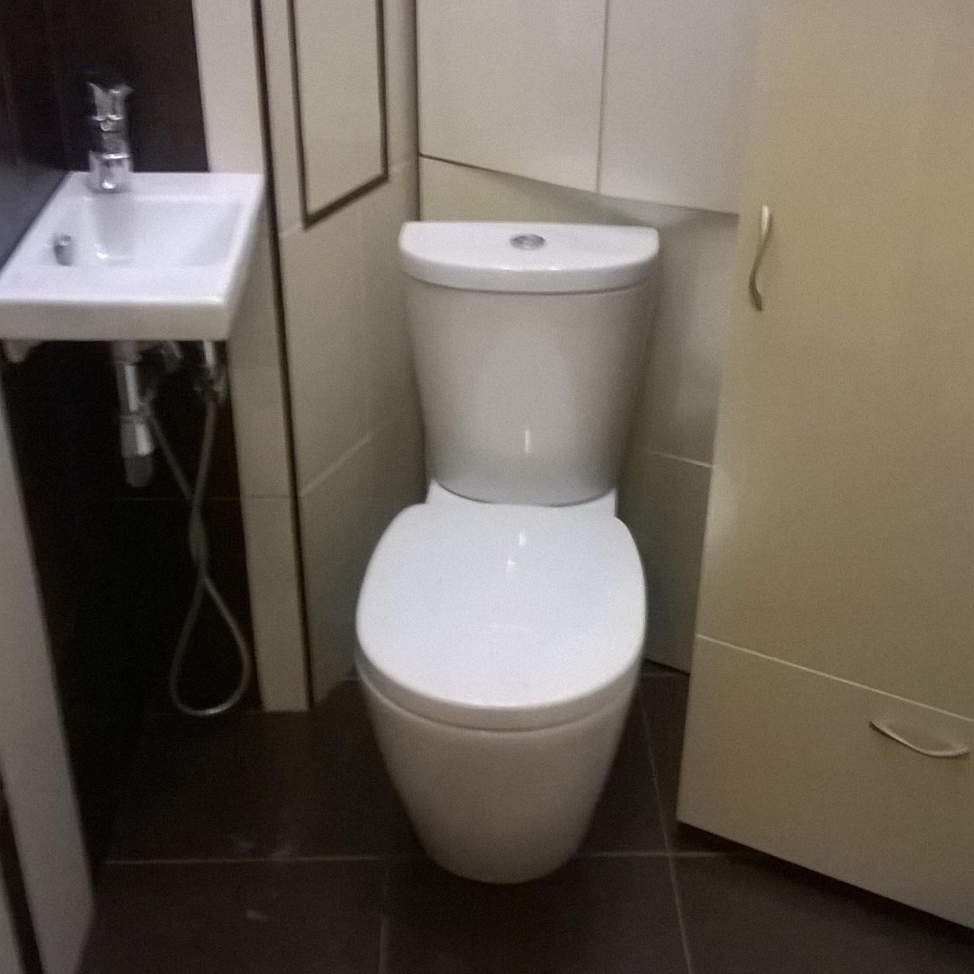 Ремонт туалета. Туалет